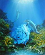 La rose des mers